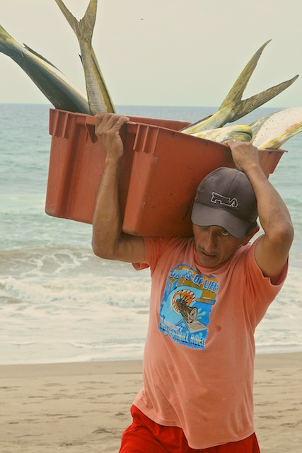 Carrying the catch from the boat to gutting table