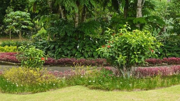Sri Lanka Blog PIX 33