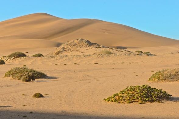 dunes 019