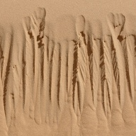 dunes 022