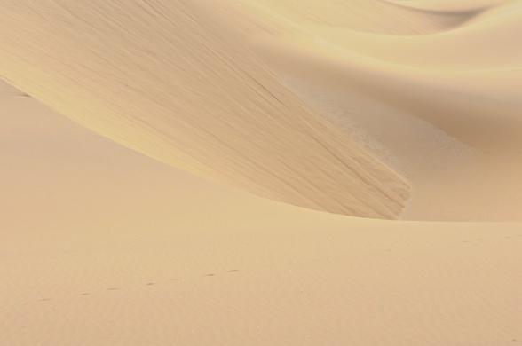 dunes 028