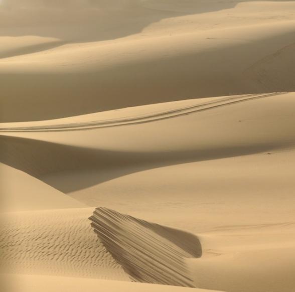 dunes 031