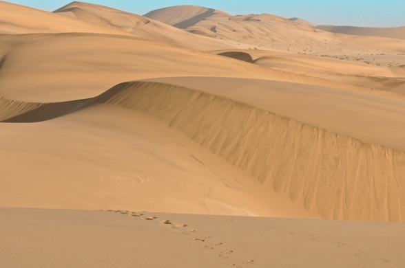 dunes 034