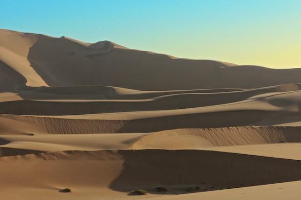dunes 035
