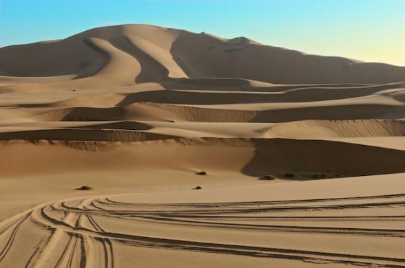 dunes 036