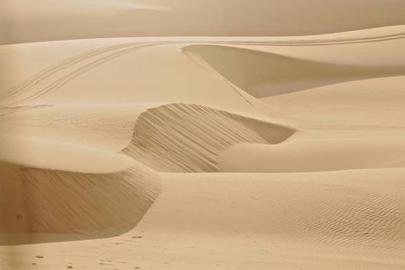 dunes 038