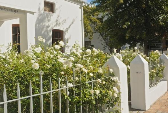 Stellenbosch 032