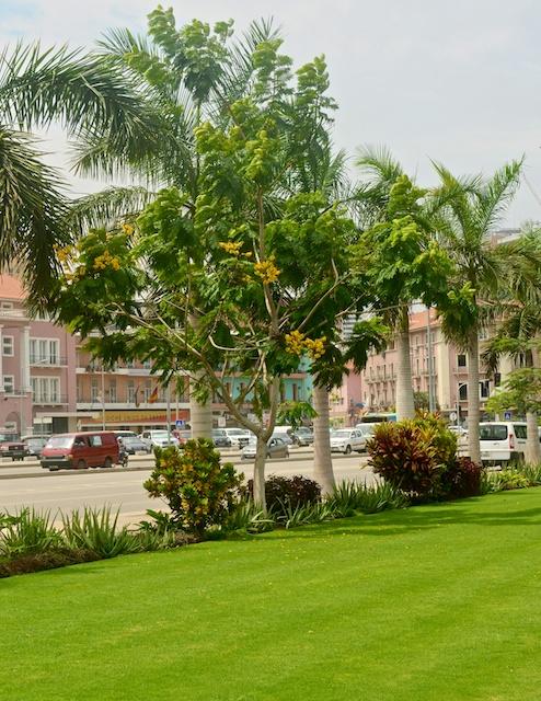 Luanda29