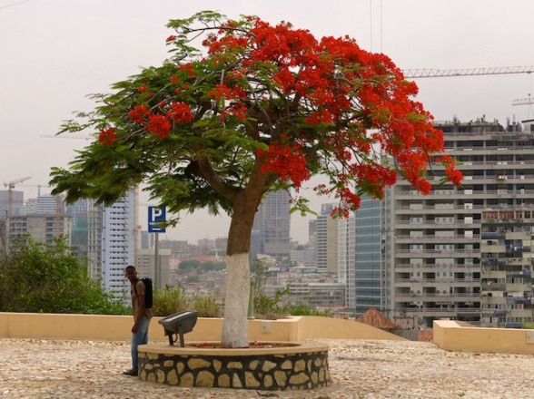 Luanda6