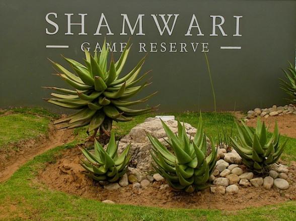 Shamwari1