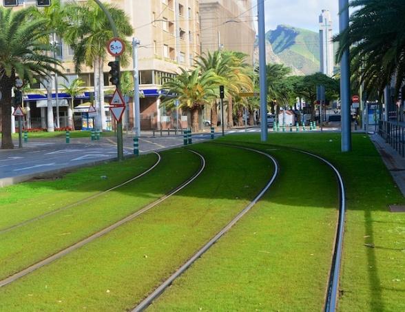 Tenerife4